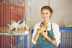 jobs-with-animals