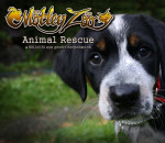 Motley Zoo Animal Rescue
